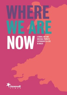 Where we are now, LGBT poll, Wales,