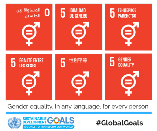 SDG5, gender equality, committee report, government plan needed