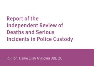 report, independent review, deaths and serious incidents, police custody, published