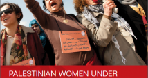 Human rights, Palestinian women and Israel