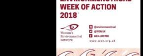 Remarks on environmenstrual action