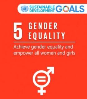 UN SRVAW, UN women's groups, end femicide, SDG5,