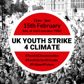UK school strike, strike 4 climate, #FridaysforFuture, protest, government inaction, climate crisis, water crisis, extinction, Greta Thunberg