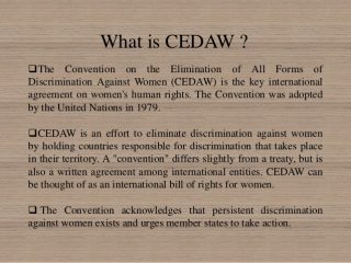 letter, Minister, women's organisations, Converntion on the Elimination of All Forms of Discrimination Against Women, CEDAW, UN review 2019,