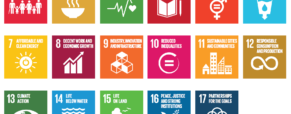 After COVID: use the sustainable development goals