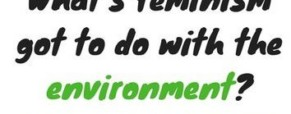When environmental issues are women's issues