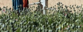 Afghanistan women struggle with opium addiction