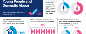 Domestic violence and young people